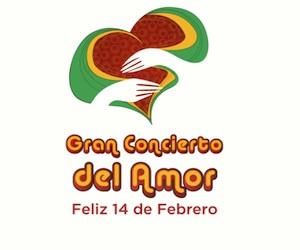 20120207135942-concierto.jpg
