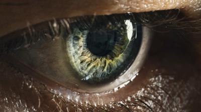 20120610041407-cornea.png