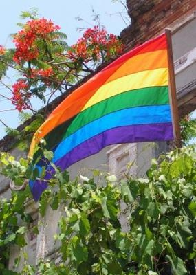 20150507114518-0-bandera-gay.jpg