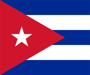 20110510031645-bandera-notaoficial.jpg