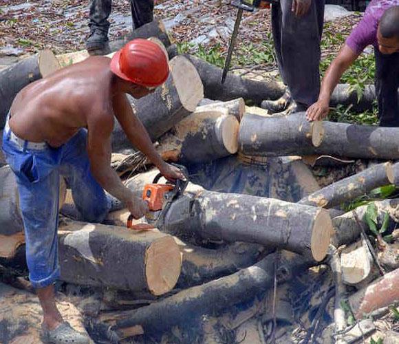 Se retiran los árboles de las vías en Santiago de Cuba