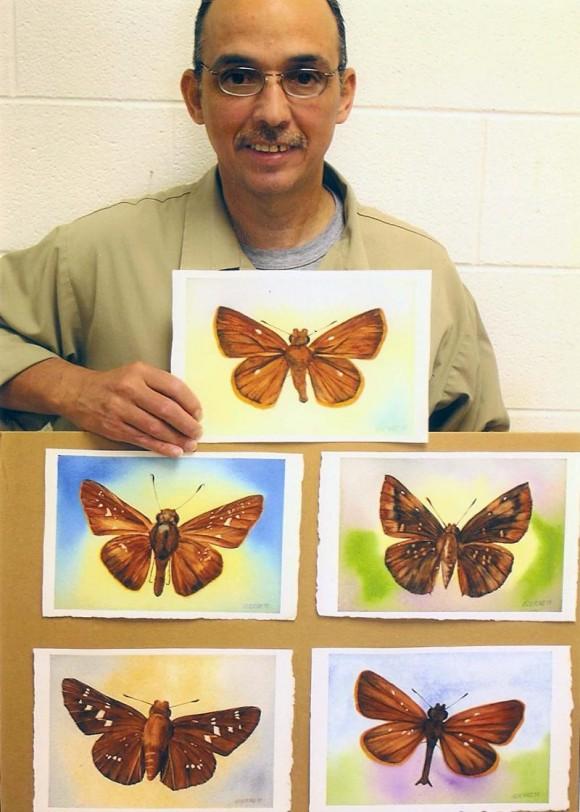 mariposas-1
